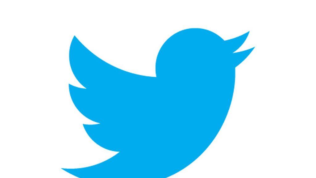 El pájaro de Twitter vuela solo