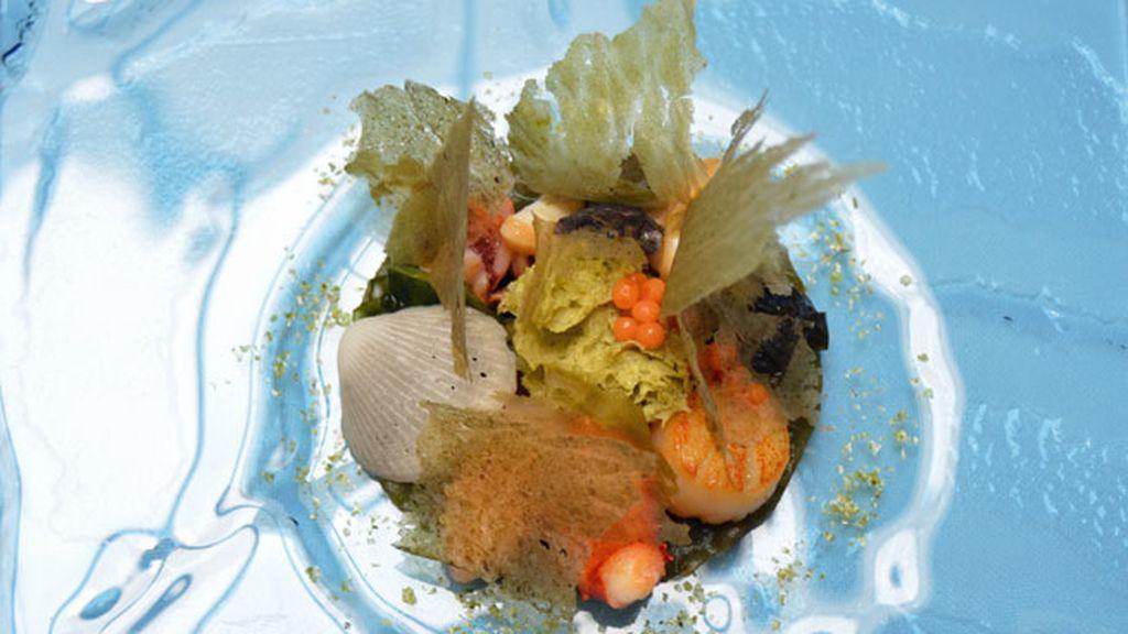 Coral de moluscos, por Mario Sandoval