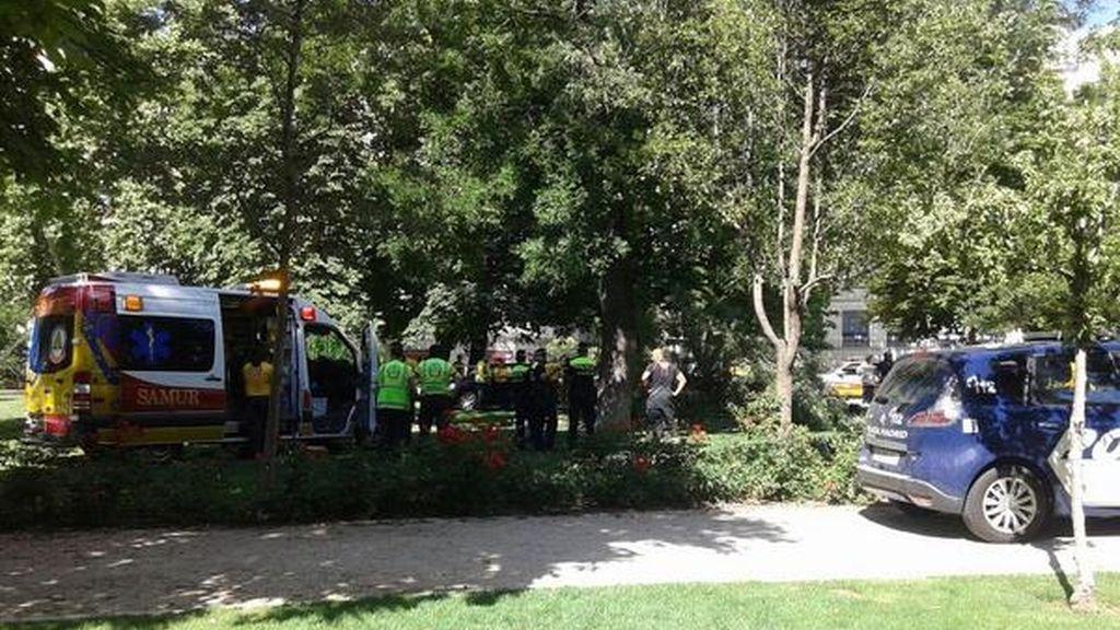 Muere tras caerle encima una rama de árbol. Foto: Emergencias Madrid