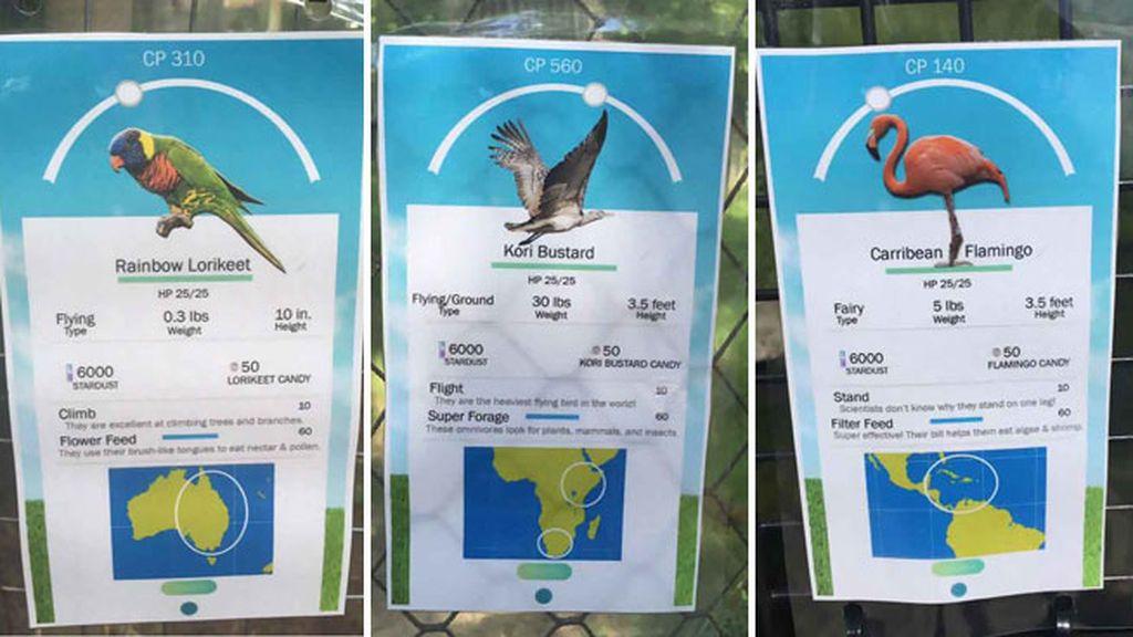 El zoo de Birmingham se une a la fiebre de Pokémon Go