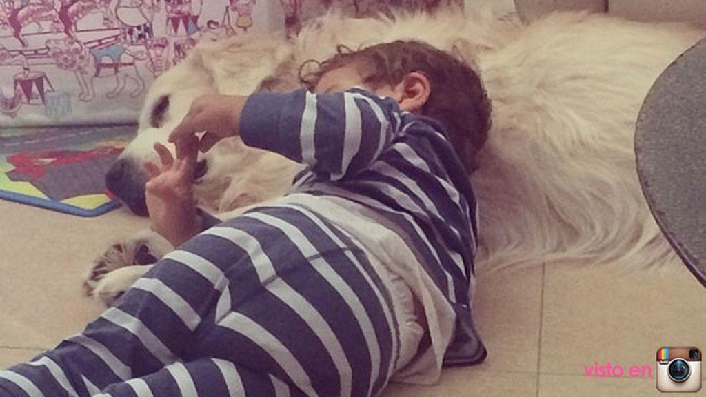 La familia de Lucas se completa con los perros con los que viven, Lunes y Lanas
