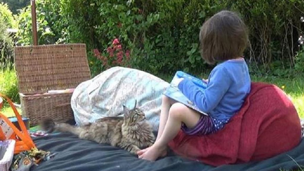 La pequeña tiene autismo y vive en Reino Unido