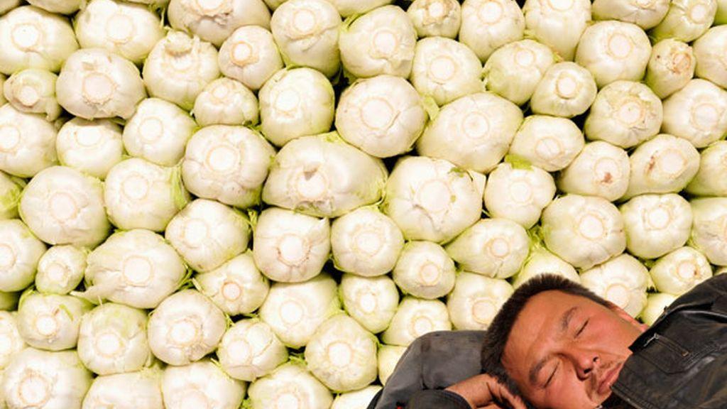 Siesta junto a las verduras