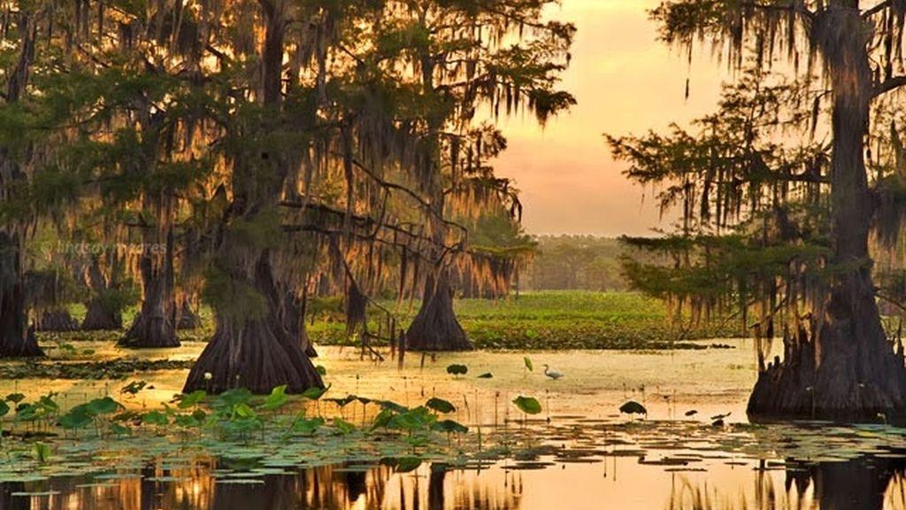 14. Lago Caddo, Texas