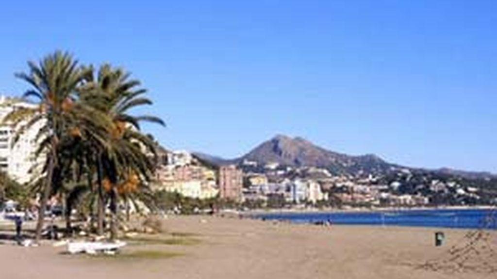 Imagen de una de las platas de la ciudad de Málaga