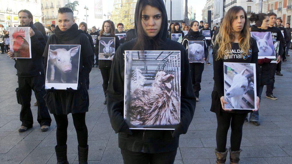 Igualdad Animal muestra en Madrid cadáveres y fotografías de animales maltratados