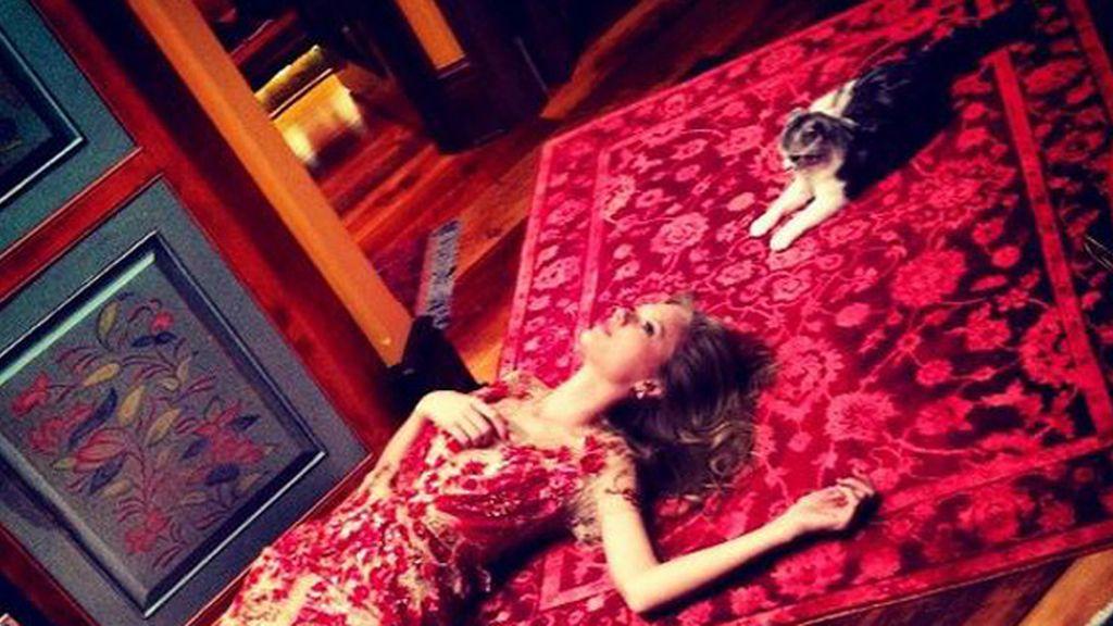 Taylor Swift da las gracias a su adorado gato