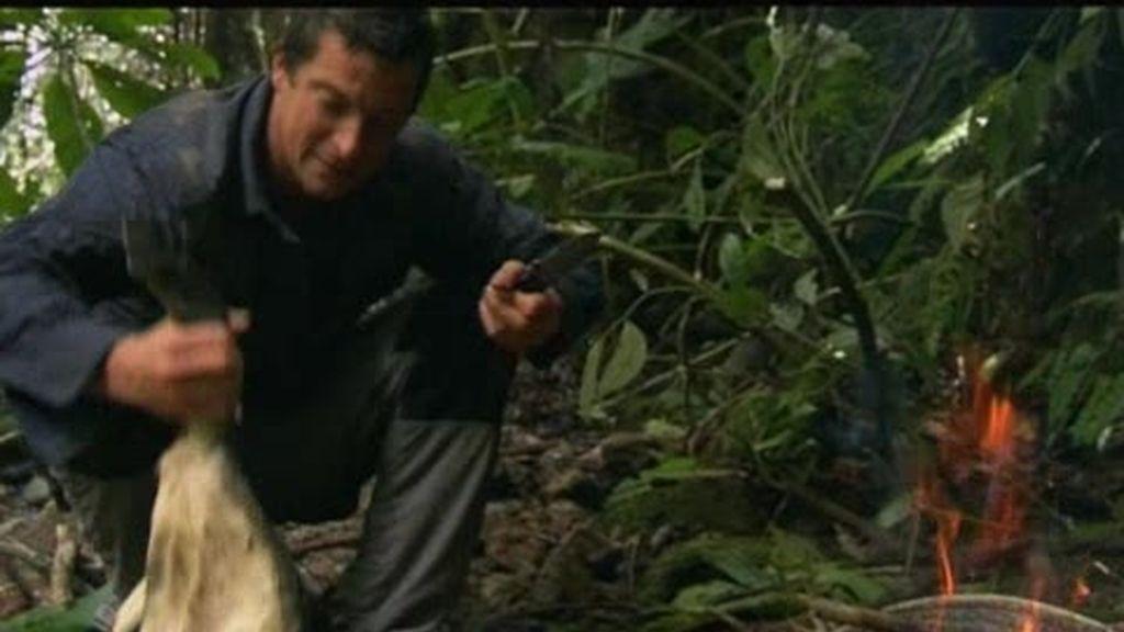 Anillo de Fuego: El último superviviente se hace un lagarto a la brasa