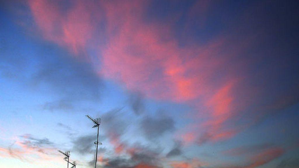 Cielo 'pink'