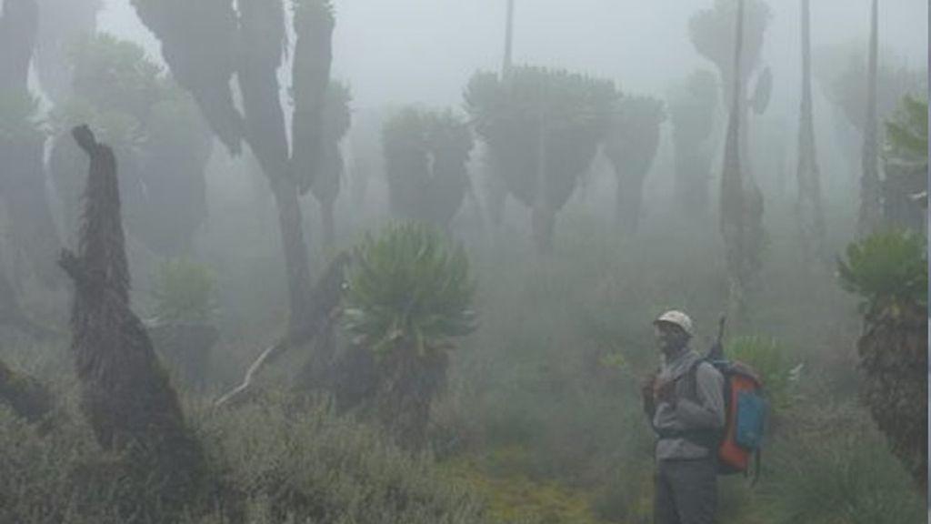 La niebla y lo inestable del terreno ha sido un problema para este Desafío