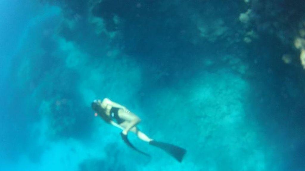 Volando entre arrecifes Foto 4