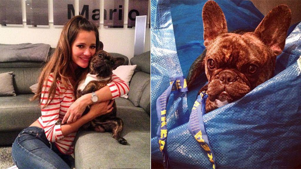 Malena Costa, toda una amante de los bulldogs, y de Roco