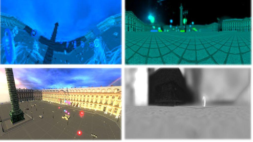 experiencia 3D, visión animales