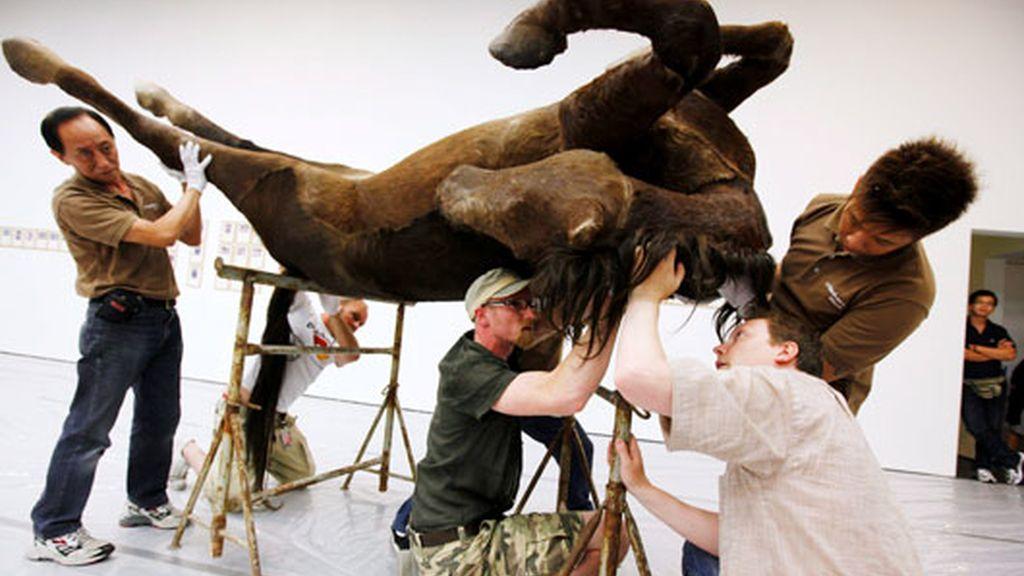Los caballos también son arte