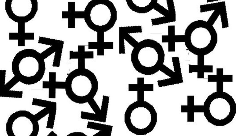 Los criterios para conceder a una película la nueva categoría deben promover la eliminación de prejuicios, imágenes estereotipadas y roles sexistas.