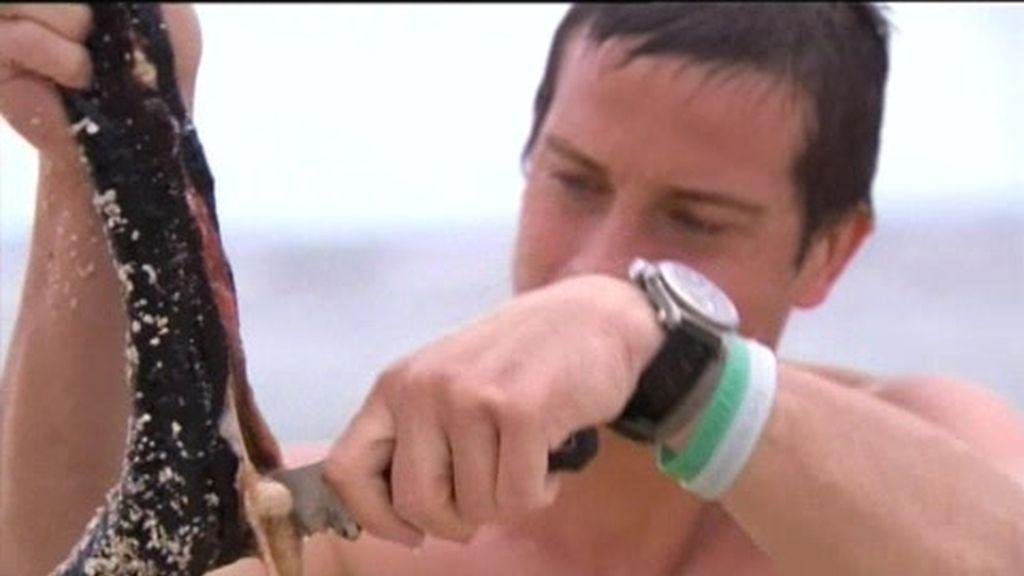Anillo de Fuego: ¿Le sabrán ricos los pepinos de mar al último superviviente?