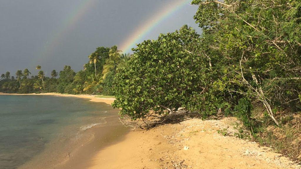teresa playa