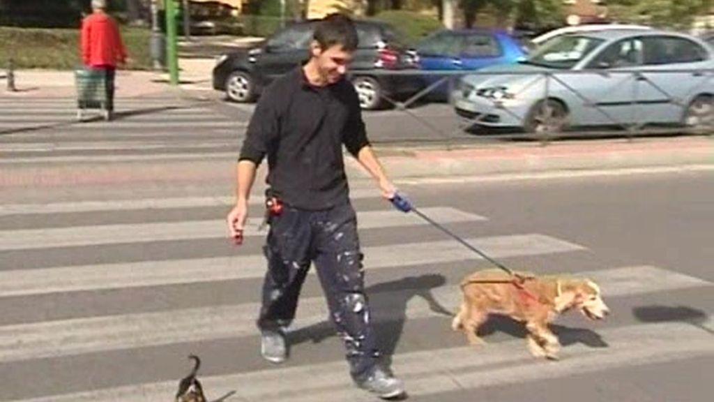 Ropa para los perritos más fashion