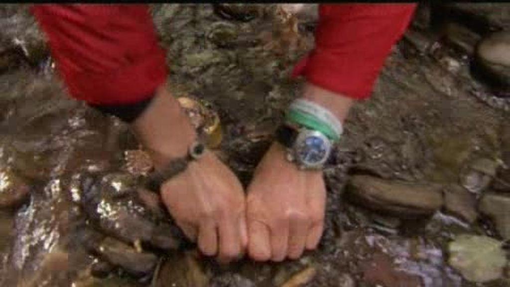 Rumanía: El último superviviente te enseña a pescar truchas con las manos