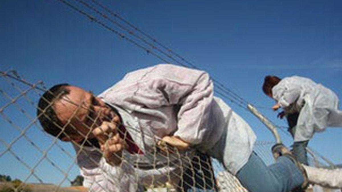 Imagen del momento en que algunos pacifistas saltan la valla. Foto: www.antimilitaristas.org