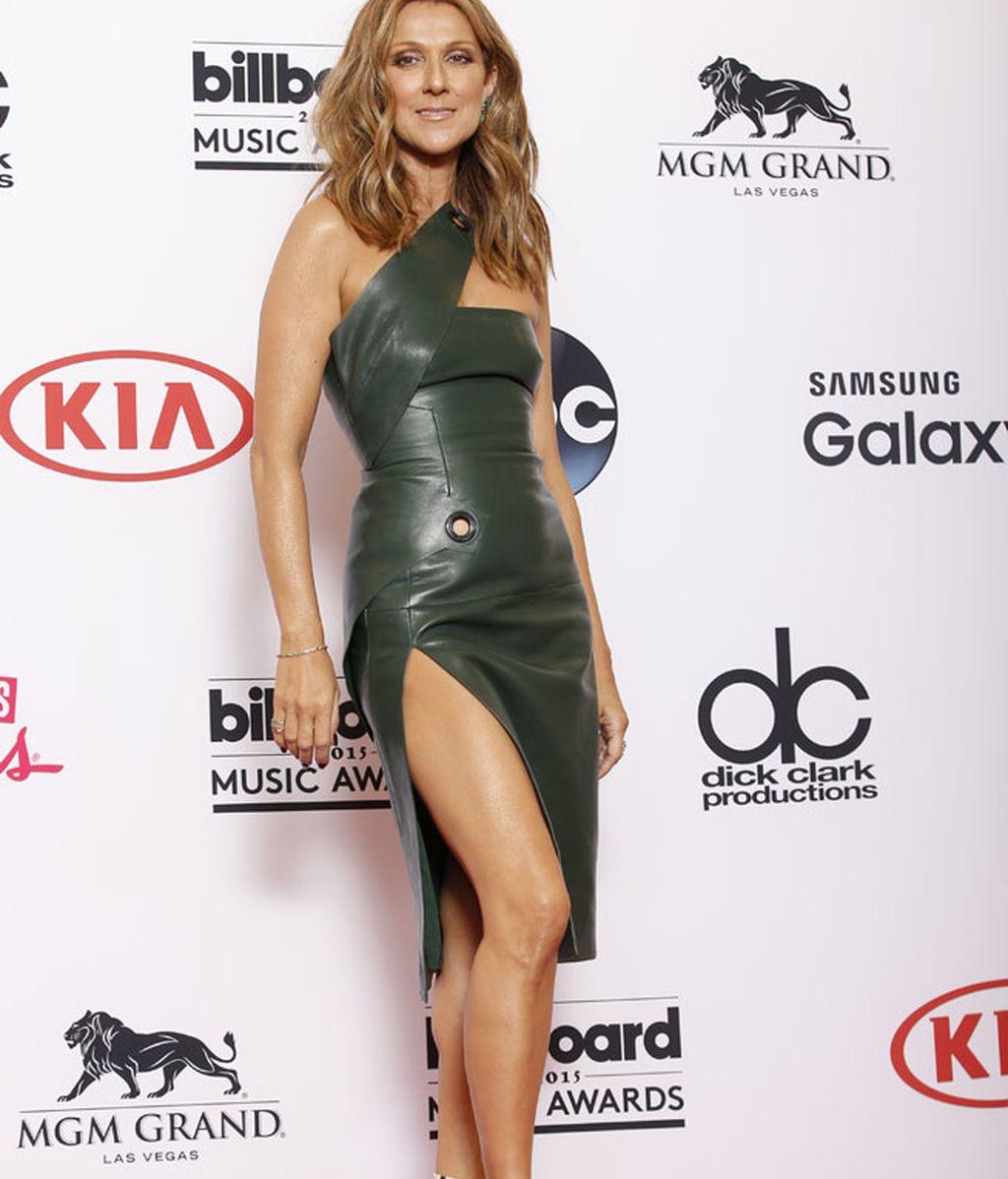 Céline Dion posó con un vestido de cuero verde
