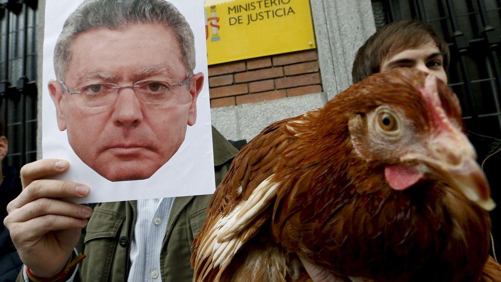 """Provida pide a Gallardón que no sea """"gallina"""" y derogue la Ley del aborto. Foto: EFE"""