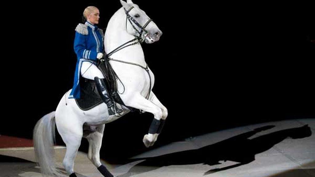 Baile de caballos