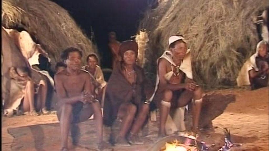 Quinto Consejo bushman