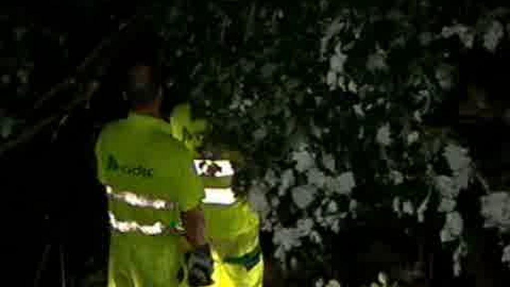 Carreteras y trenes de Cataluña afectados por las lluvías