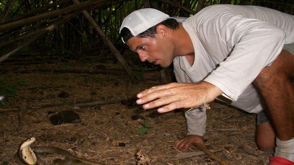 Frank intenta coger una serpiente