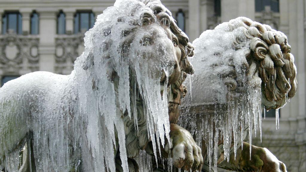 Los leones de la fuente de la Cibeles, congelados