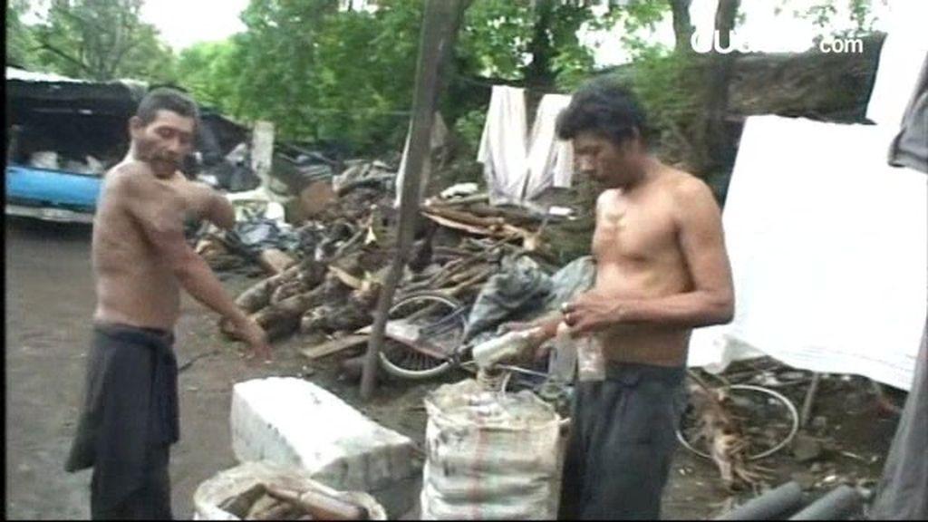 INÉDITO: Separar vidrios, el negocio de La Chureca