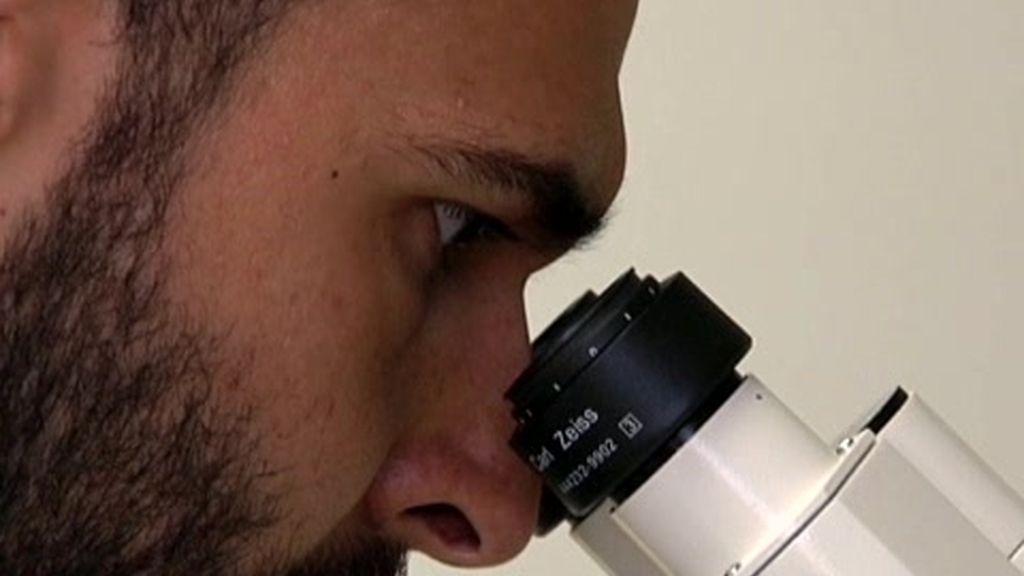 Nuevas formas de generar células madre