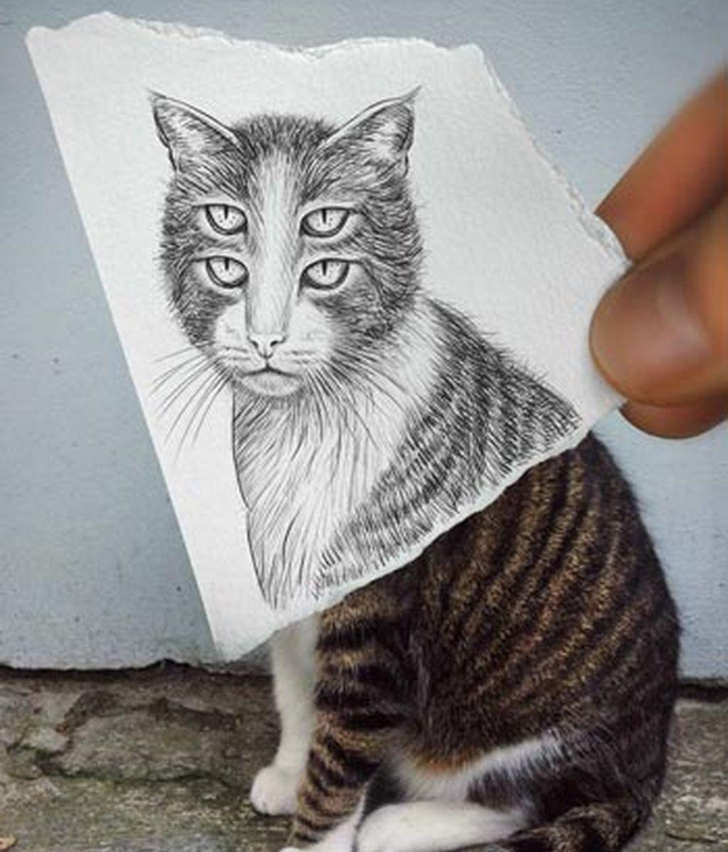 Arte, entre el dibujo y la fotografía