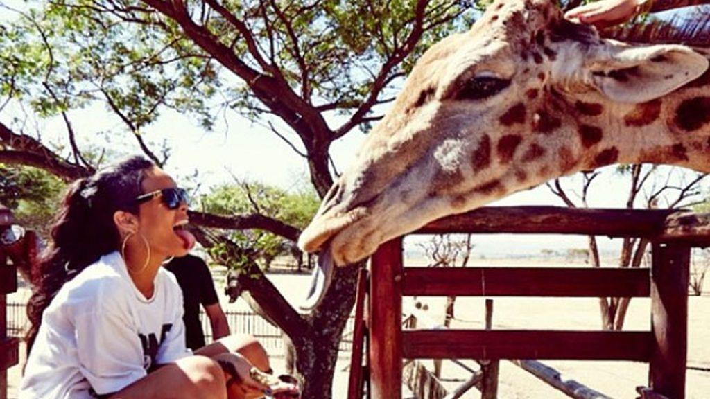 Parece que Rihanna se entiende muy bien con las jirafas