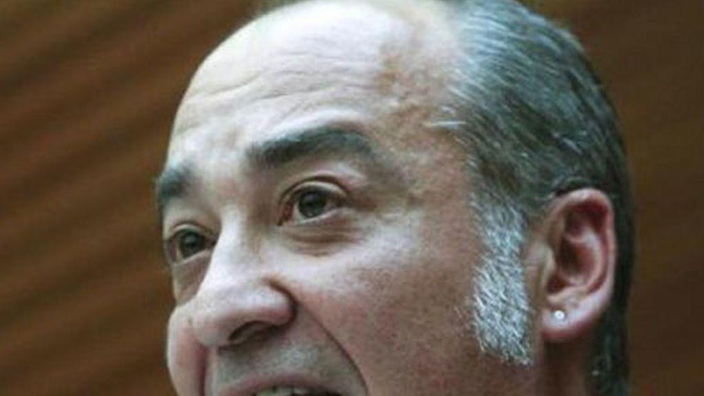 El diputado general por Guipúzcoa, Martín Garitano