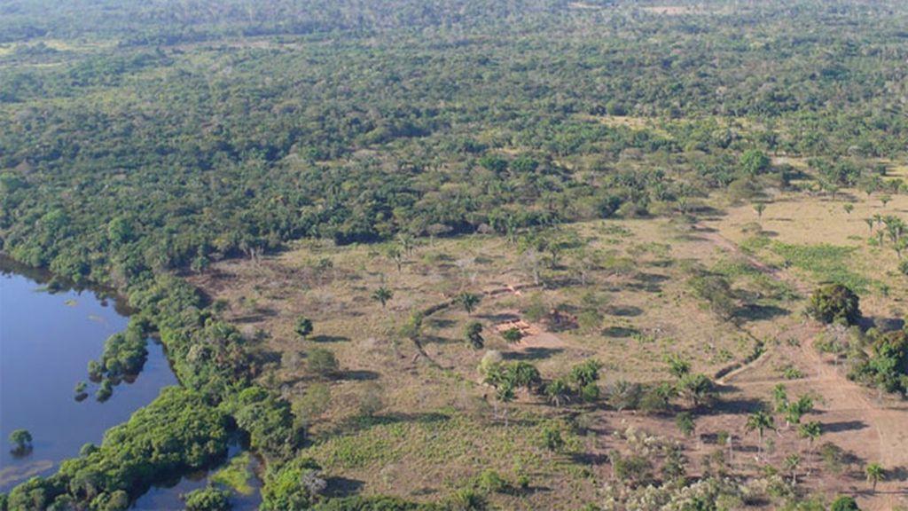 Descubren estructuras arcaicas más antiguas que el propio Amazonas