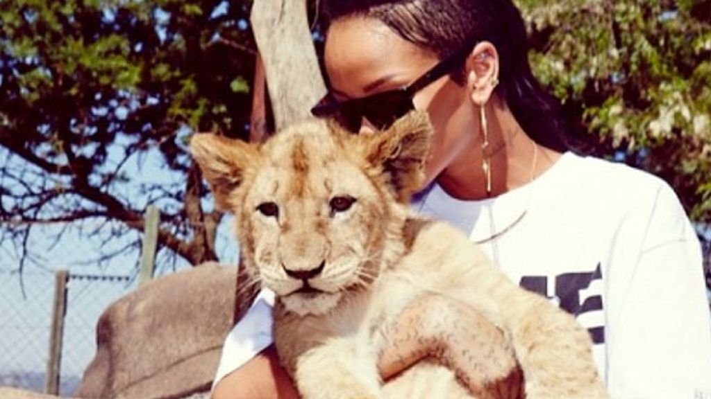Así de cariñosa se ha mostrado RiRi con un pequeño león