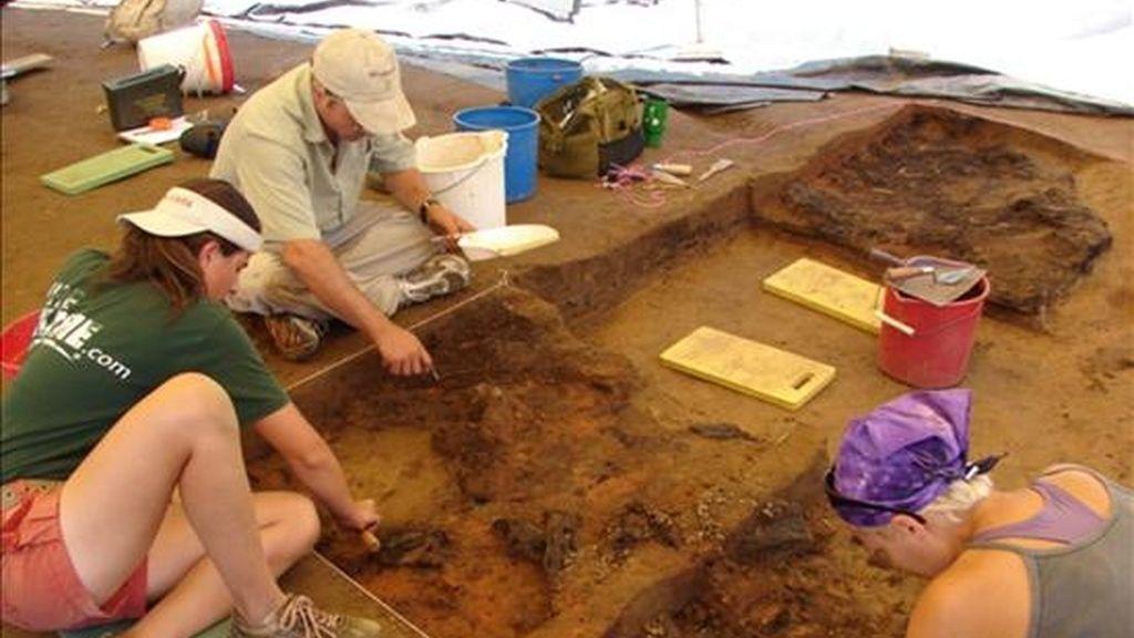 Un grupo de arqueólogos durante las labores de investigación. EFE/Archivo