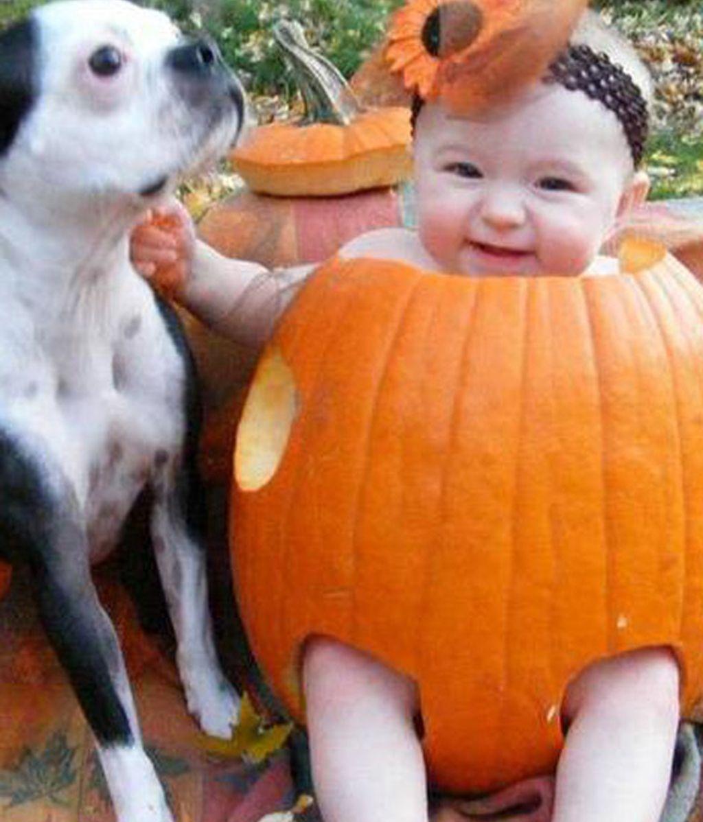 Bebés para Halloween