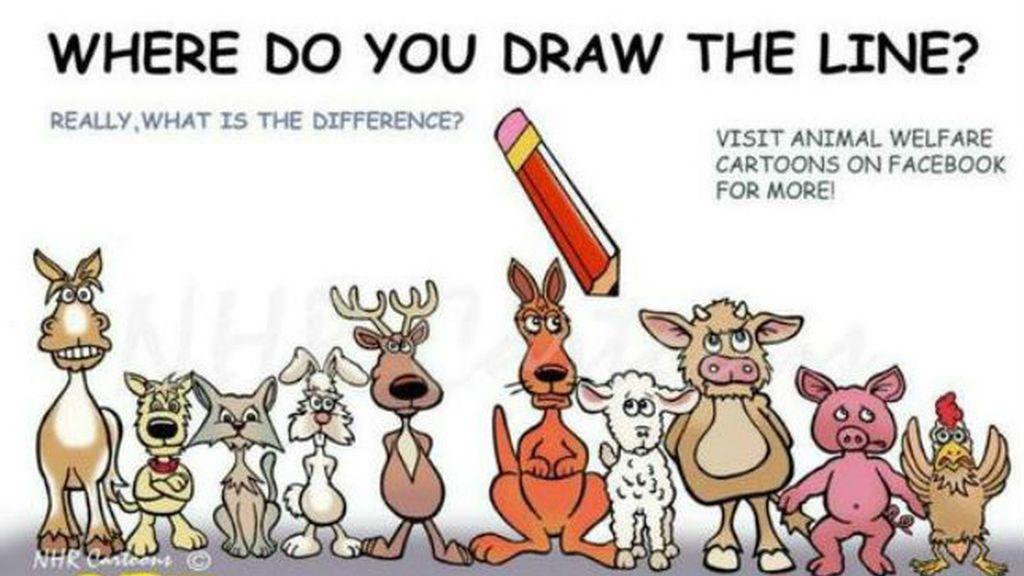 Veganismo, ¿dónde pondrías la línea?