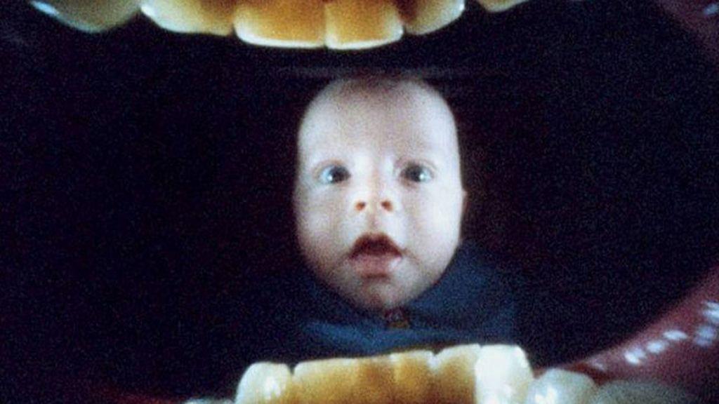 El fotógrafo Justin Quinnell utiliza una cámara  dentro de la boca