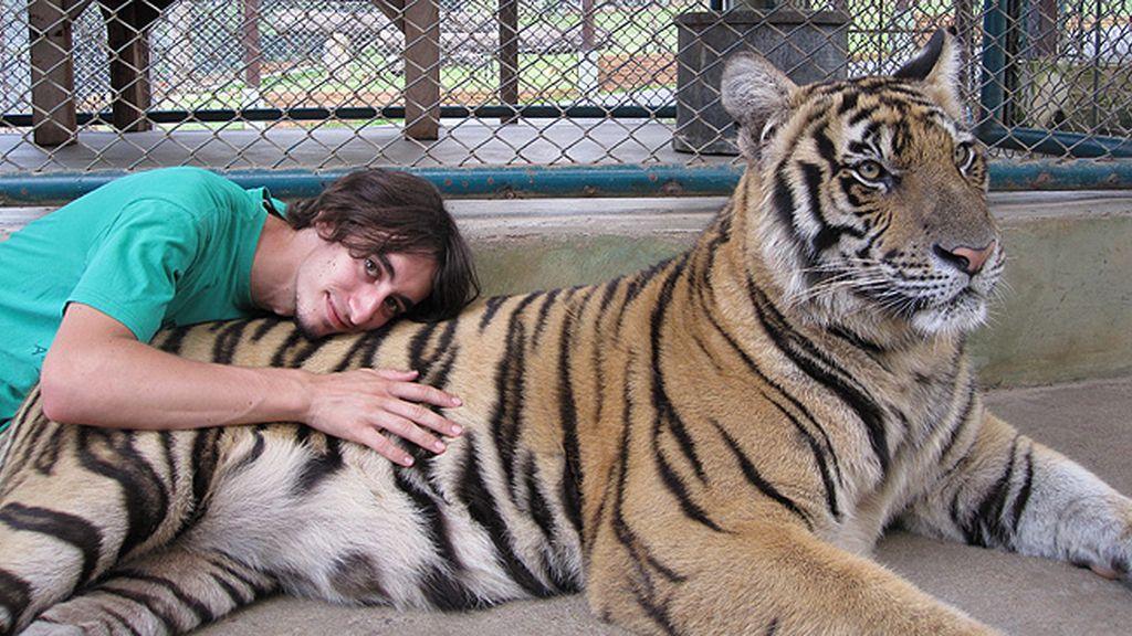 Marcos Ruiz Ceballos - Un gato de tailandia