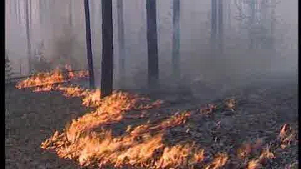 Rusia, en llamas
