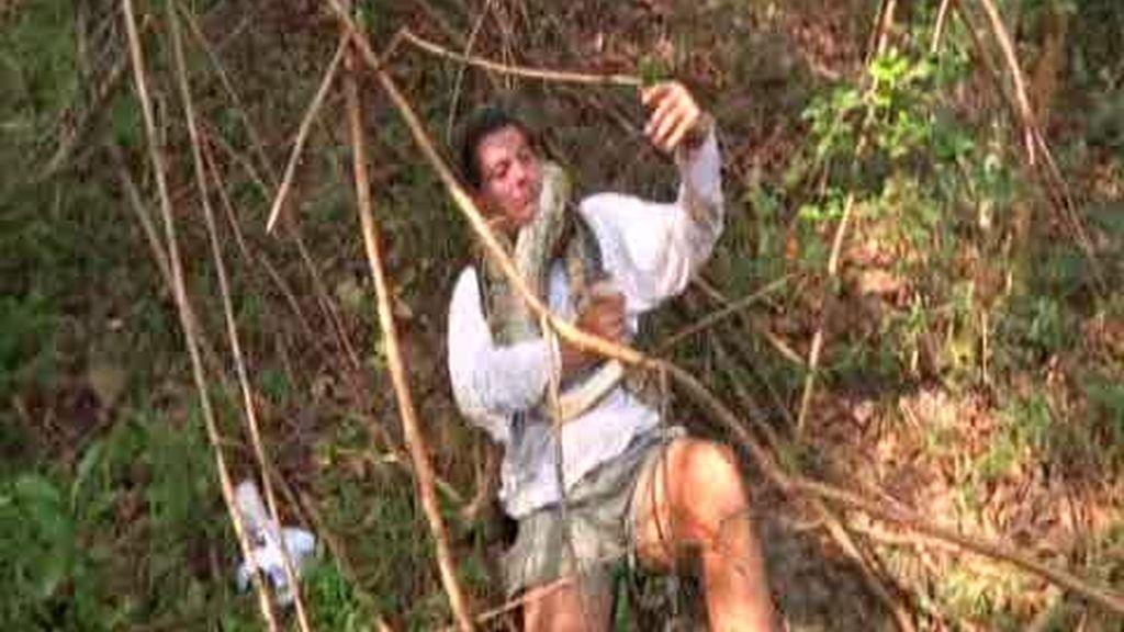 Promo Frank de la jungla: las hay grandes, pequeñas, feas, bonitas y... mortíferas