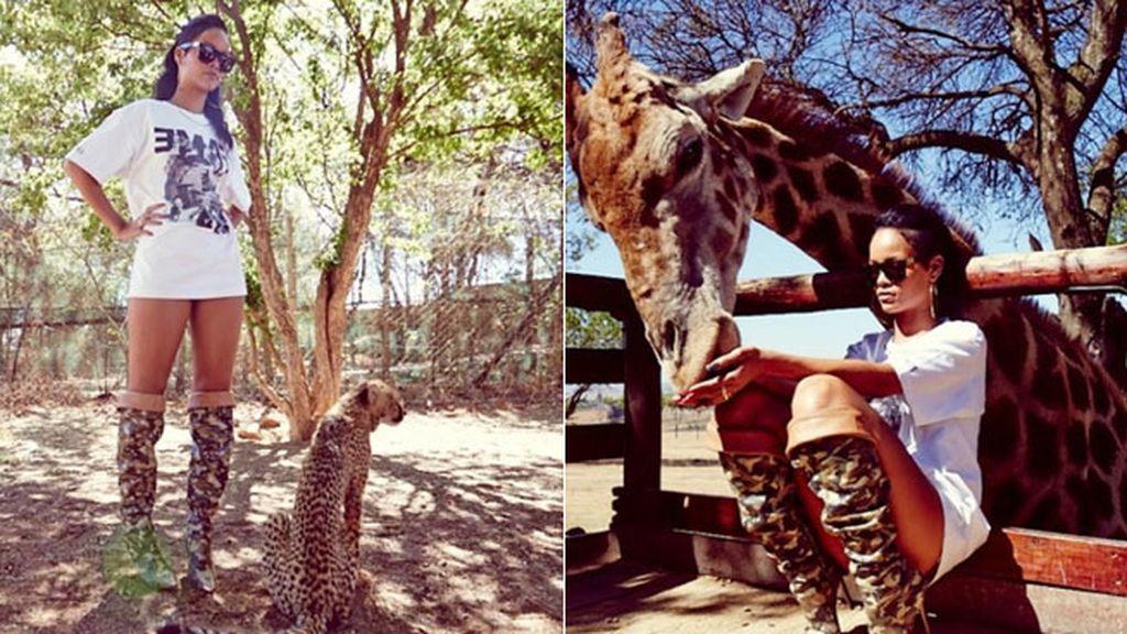 Rihanna posó con un guepardo, muy conjuntado con sus botas