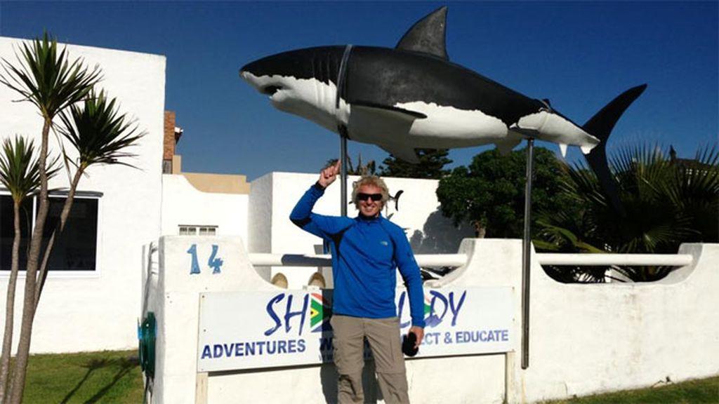 Nadando con el tiburón blanco