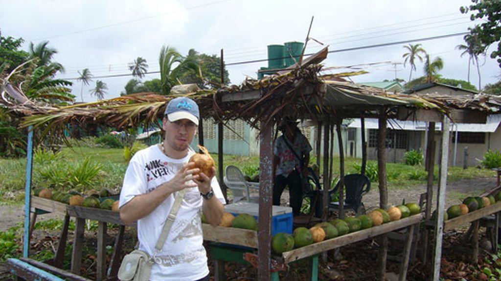 Cocos en Tortuguero