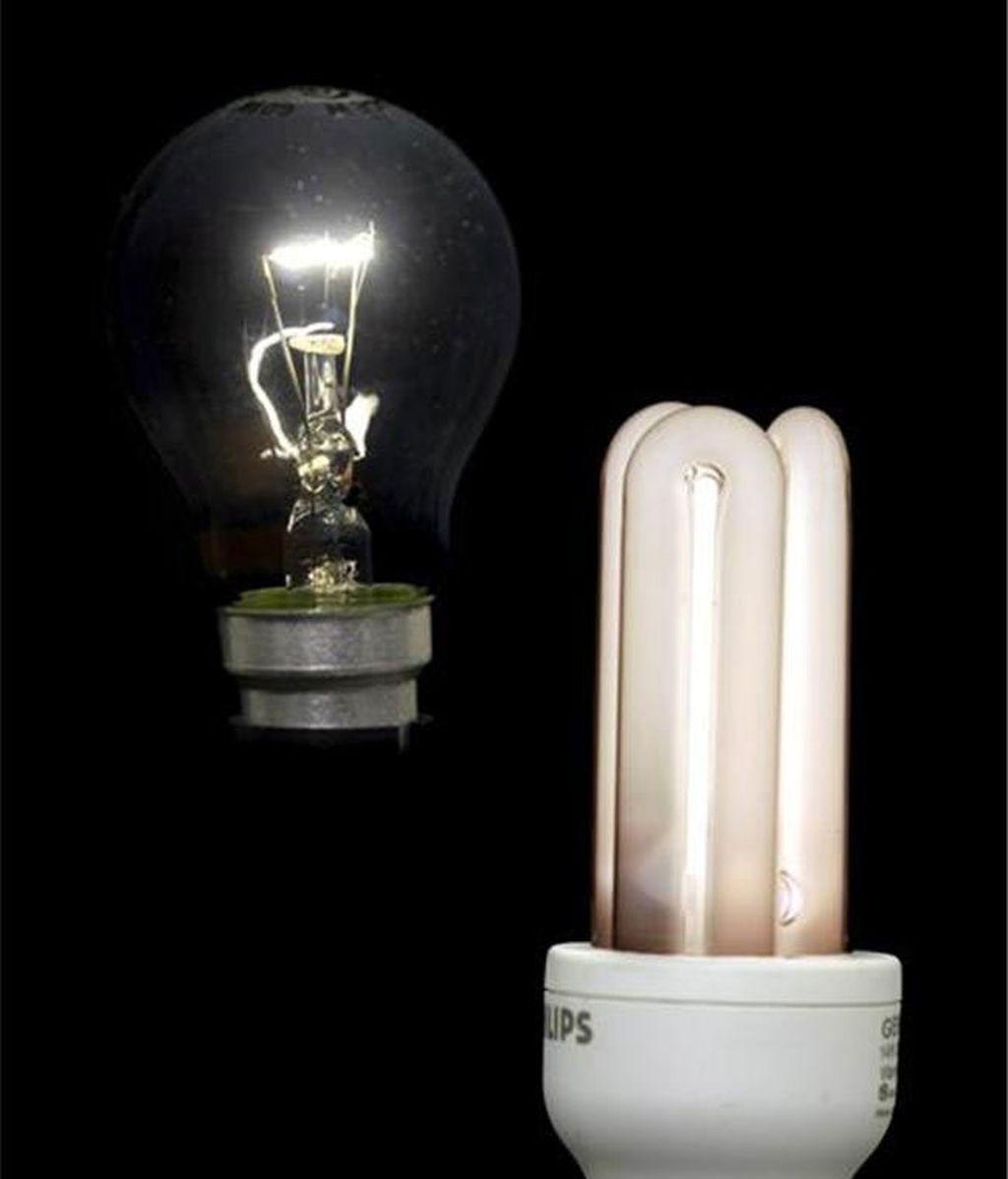 Las bombillas de bajo coste sustituyen progresivamente a las de bajo coste