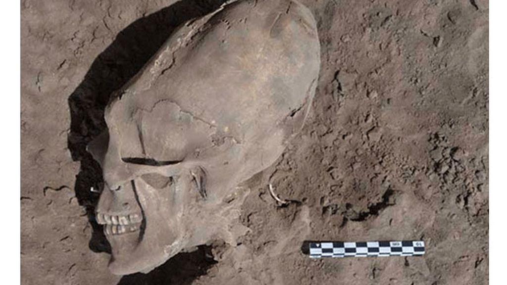 Hallan cráneos humanos con rara forma alargada en México